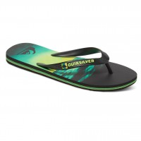 Quiksilver Molokai Hold Down black/green/green