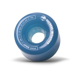 Arbor Bogart 61mm/78A ghost blue