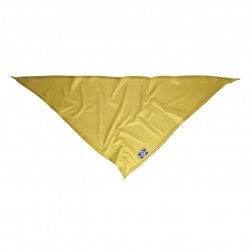 NXTZ Single Layer Bandana sun