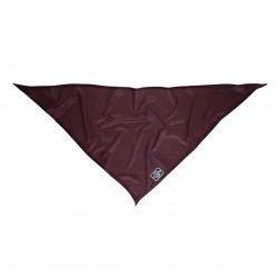 NXTZ Single Layer Bandana wine