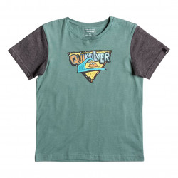 Quiksilver Classic Ss Boy Super Boys silver pine