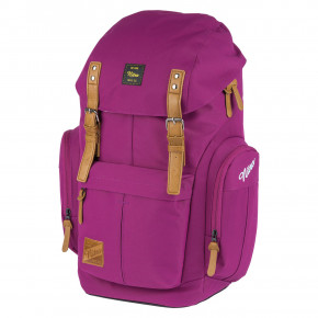 Go to the product Backpack Nitro Daypacker grateful pink 2020/2021