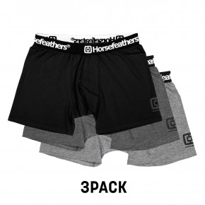 Go to the product Boxer shorts Horsefeathers Dynasty 3 Pack assorted 2019/2020