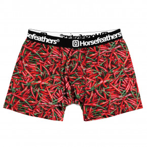 Go to the product Boxer shorts Horsefeathers Sidney chilli 2019/2020
