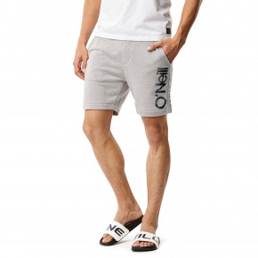 Go to the product Shorts O'Neill Cali Jogger silver melee 2018