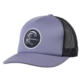 Go to the product Cap O'Neill Trucker silver melee 2017