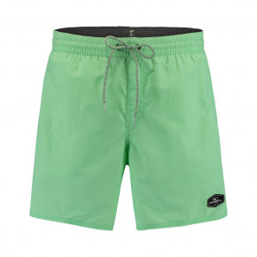 Go to the product Boardshorts O'Neill Vert neo mint 2020