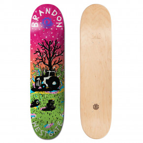 Go to the product Skate decks Element Future Nature westgate 7.75 2018