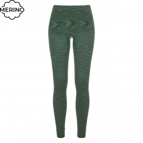 Prejsť na produkt Spodky Ortovox Wms 230 Competition Long Pants green isar blend 2020/2021