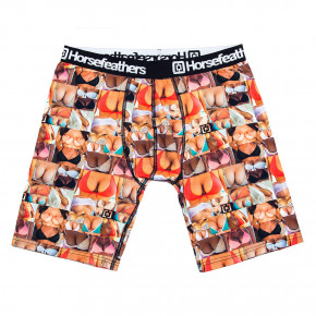Go to the product Boxer shorts Horsefeathers Sidney Long boobs 2018/2019