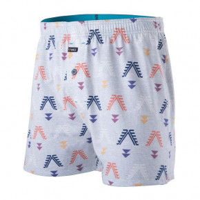 Go to the product Boxer shorts Stance Bow And Arrow grey 2019