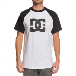 Go to the product T-shirt DC Star Raglan 2 snow white/black 2020