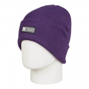 Go to the product Beanies DC Wms Label grape 2020/2021