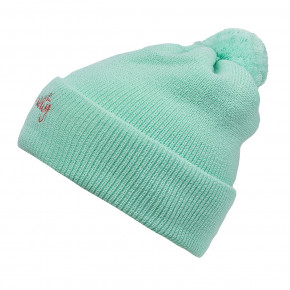 Go to the product Beanies Gravity Birdie seafoam 2019/2020