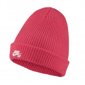Go to the product Beanies Nike SB Fisherman 2021