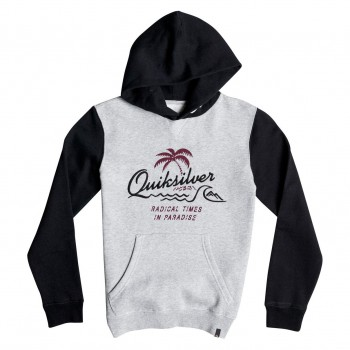 Mikina Quiksilver No Longer Hoody Youth